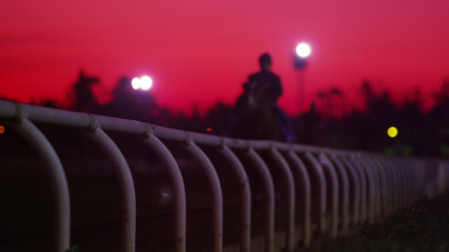 sunset at horse racetrack - pferderennbahn stock-videos und b-roll-filmmaterial