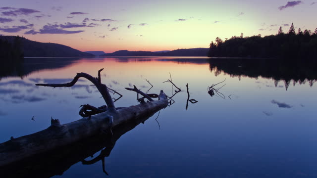 ws t/l sunset at  lake / quebec , canada - lago video stock e b–roll