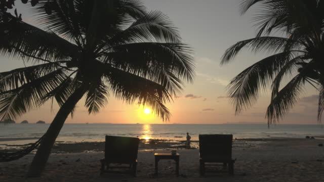 vidéos et rushes de sunset at the sea with palm trees - palmier
