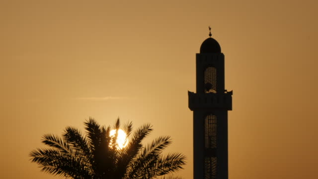 sunset behind mosque and palm tree, muscat, oman, middle east, asia - minareto video stock e b–roll