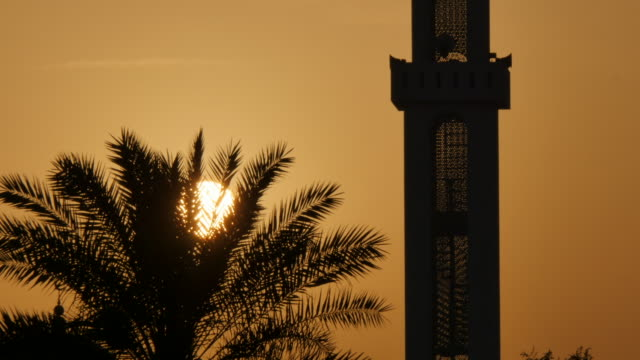 Sunset behind Mosque and palm tree, Muscat, Oman, Middle East, Asia