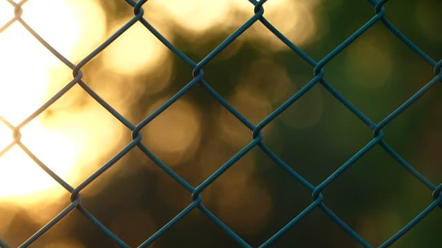 vidéos et rushes de bokeh coucher de soleil à travers la clôture - en dernier
