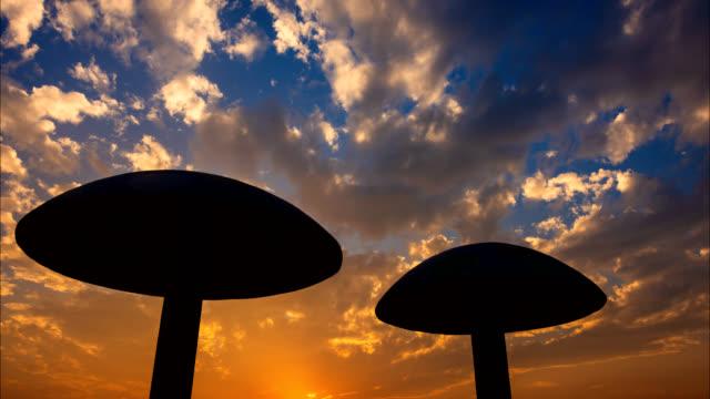 stockvideo's en b-roll-footage met zonsondergang cloudscap scène 4k dci - paddenstoel