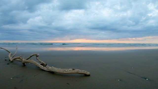 stockvideo's en b-roll-footage met zonsondergang cloudscape over een ongerepte strand voor nieuw-zeeland met drijfhout - drijfhout