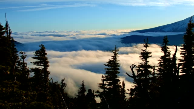 sunset forest fog flank of mountain timelapse inversion mt. hood oregon cascades 3 - mt hood stock videos & royalty-free footage