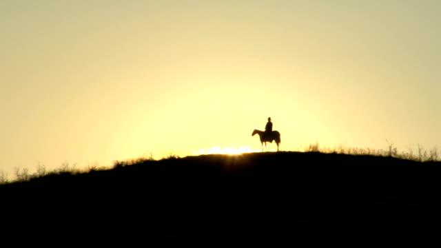 夕暮れの馬 - 乗る点の映像素材/bロール
