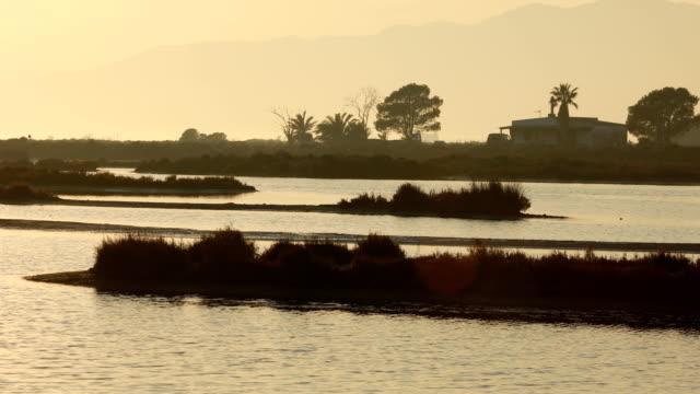 vídeos y material grabado en eventos de stock de atardecer en el delta del ebro - pato