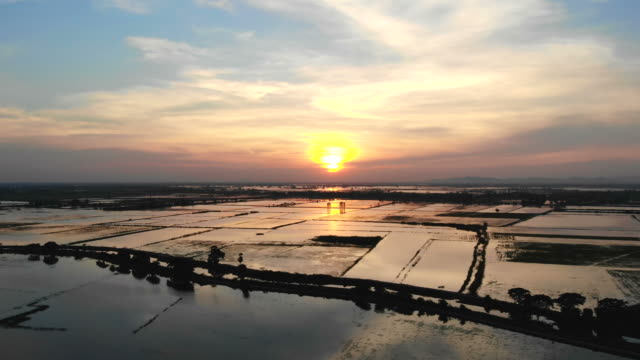 sunset in environment at thailand - southeast asia stock videos & royalty-free footage