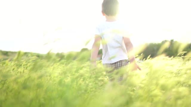 草原の夕日:手を振って草畑を歩く小さな男の子 - 男の子点の映像素材/bロール