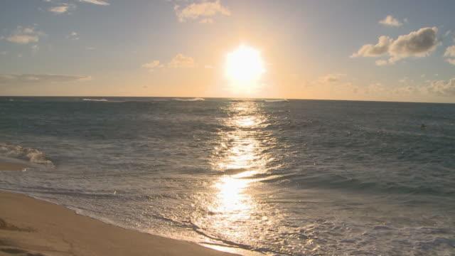 sunset in honolulu, hawaii - 静かな情景点の映像素材/bロール