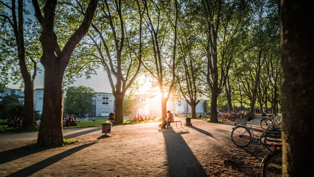 sunset in idyllic urban park - natural phenomenon stock videos & royalty-free footage