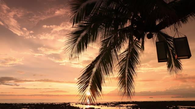クラビ、ランタ島の夕日 - ヤシ点の映像素材/bロール