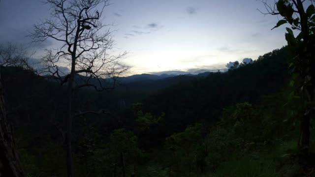 vidéos et rushes de coucher du soleil dans la montagne et la forêt - conifère