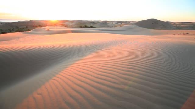 sunset in the sand dunes of the gobi desert - sanddüne stock-videos und b-roll-filmmaterial