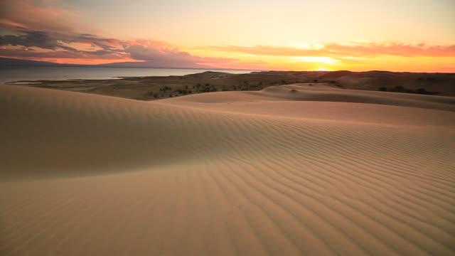 sunset in the sand dunes of the gobi desert - 砂漠点の映像素材/bロール