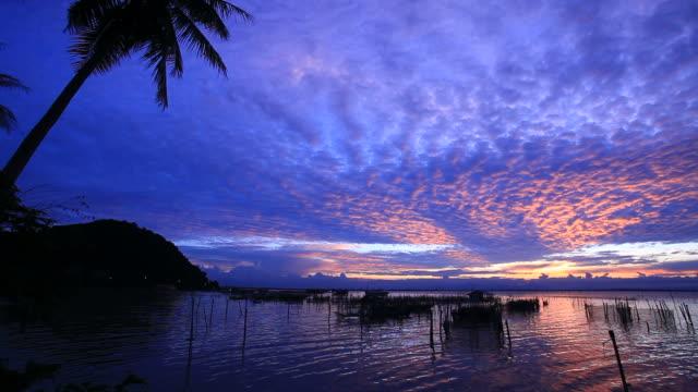 sunset in tropical zone. - kameraåkning med kran bildbanksvideor och videomaterial från bakom kulisserna