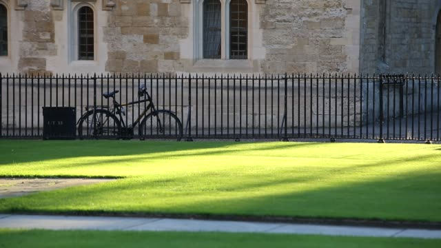 sunset light on a lawn outside the radcliffe camera in oxford, uk. - radcliffe camera stock videos and b-roll footage