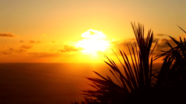 sunset majorca - balearic islands stock videos and b-roll footage
