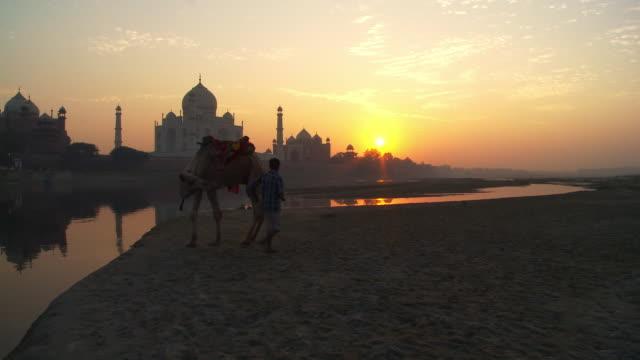 Sunset of Taj mahal and camel