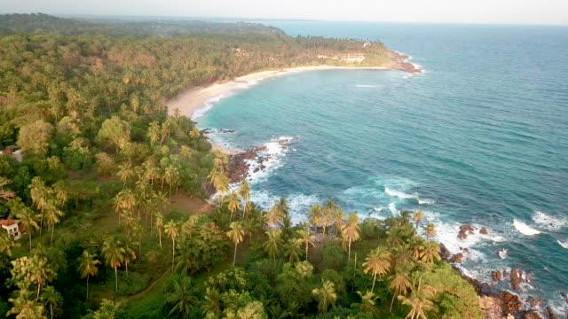vídeos de stock, filmes e b-roll de sunset on a sandy ocean beach. beautiful tropical beach with palm trees. vacation at sea. drone footage - palmeira