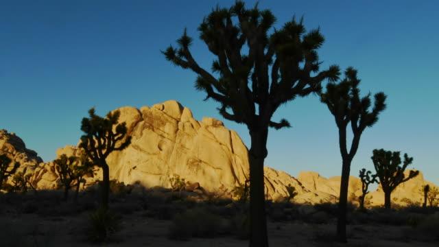 Sunset on desert landscape, Joshua Tree National Park. Time-lapse