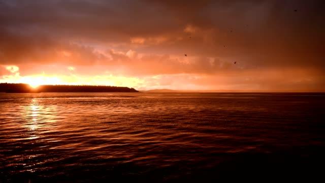 vídeos y material grabado en eventos de stock de puesta de sol en la bahía de elliott - bahía de elliott