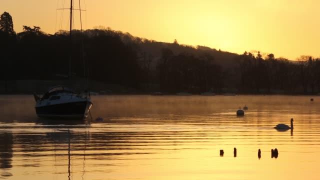 stockvideo's en b-roll-footage met sunset on lake windermere at ambleside, lake district, uk. - knobbelzwaan