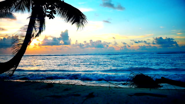 Sunset on the beach in Barbados