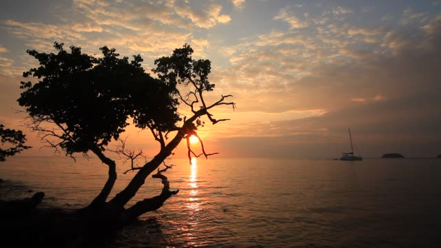 sunset on the beach - trat province stock videos and b-roll footage