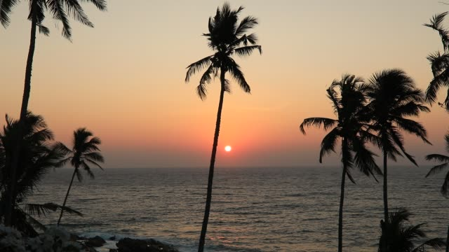 sunset on the beach with coconut palms. sri lanka - sri lankan culture stock videos & royalty-free footage