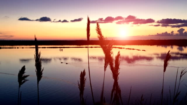 Sunset on the saltwork saline of Tarquinia