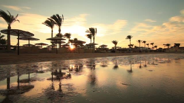Sunset on the sandy beach. Red Sea, Egypt