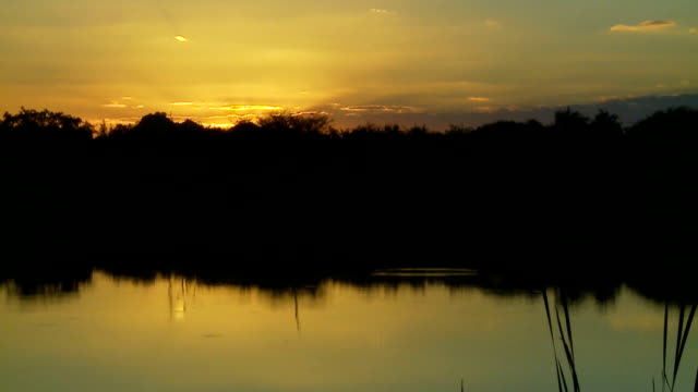 Sunset on tranquil dam/ Limpopo/ South Africa