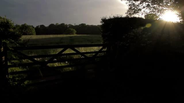 Sonnenuntergang über einem britischen Country-Tor