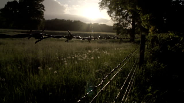 Sunset Over A British Fence With Barbed Wire