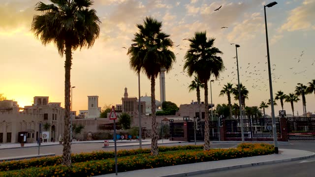 sonnenuntergang über al fahidi nachbarschaft in dubai über einer alten moschee mit vielen möwen fliegen - palme stock-videos und b-roll-filmmaterial