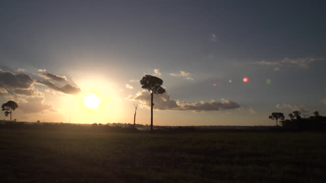 sunset over fields where rainforest once stood in the amazon brazil - sunset stock videos & royalty-free footage