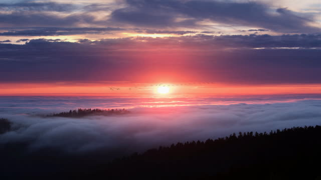 sunset over fog and pacific ocean with geese, california - atmosphere filter stock-videos und b-roll-filmmaterial
