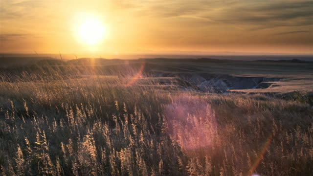 sunset over grasslands - badlands national park video stock e b–roll