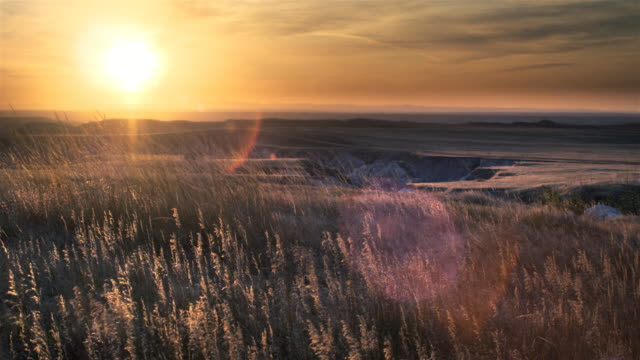 sunset over grasslands - badlands national park stock videos & royalty-free footage