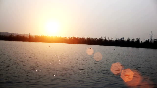 sunset over lake water - water bird video stock e b–roll