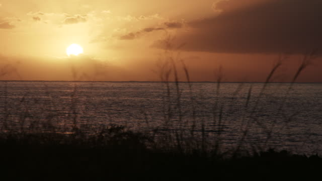 vidéos et rushes de sunset over ocean on reunion island - dom tom