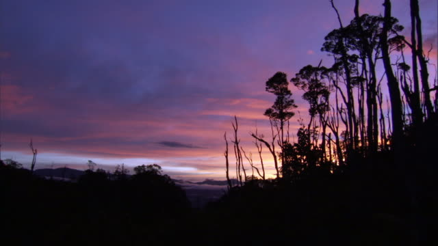 Sunset over rainforest and highlands, West Papua, Indonesia