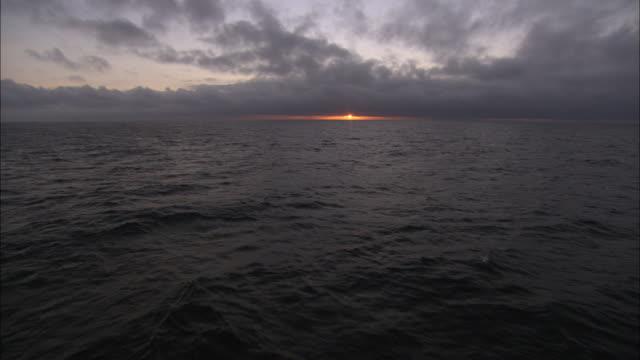 vidéos et rushes de ws, sunset over sea, antarctica - gris