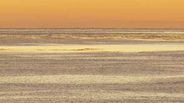 ws sunset over sea / volunteer point, falkland islands - falkland islands stock videos and b-roll footage