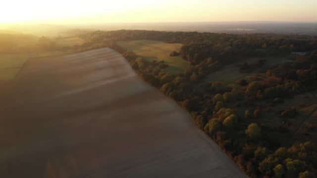 sunset over surrey hills, uk. - サリー州点の映像素材/bロール