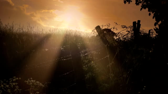 sunset over the british countryside - wales stock videos & royalty-free footage