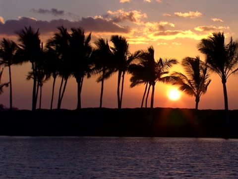 sunset over the cay - cay insel stock-videos und b-roll-filmmaterial