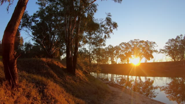 sunset over the river - riverbank stock videos & royalty-free footage
