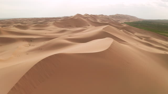 sunset over the sand dunes in the desert. aerial view - sahara desert stock videos & royalty-free footage